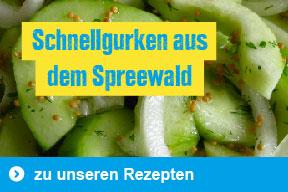 Rezept: Schnellgurken aus dem Spreewald